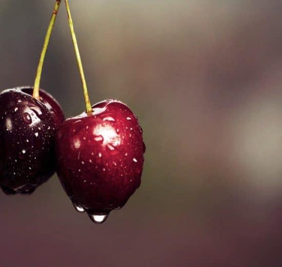 Install CherryTree